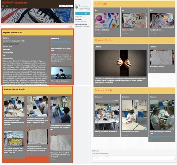 Student's Sample Story(e-Portfolio) on Teamie LMS